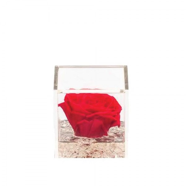 st-r50red_gifts_living_nad_idee_regalo_originali